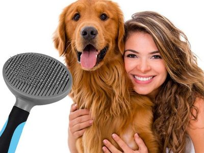 Hair Removal Dog Comb Types and Prices